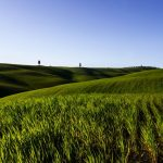 La Toscana: un par de rincones