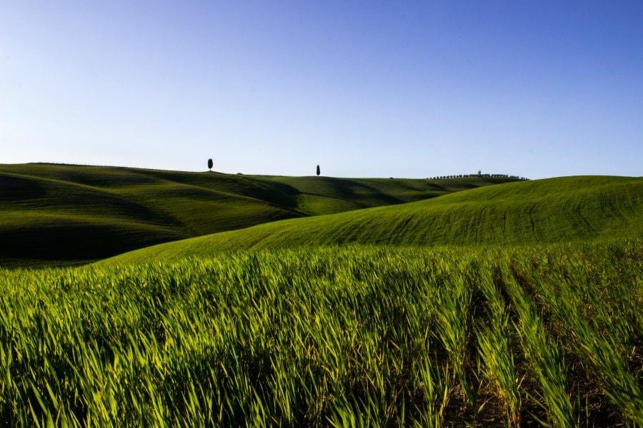 Toscana Paisajes