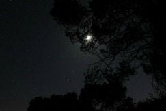 Playas de Menorca de noche