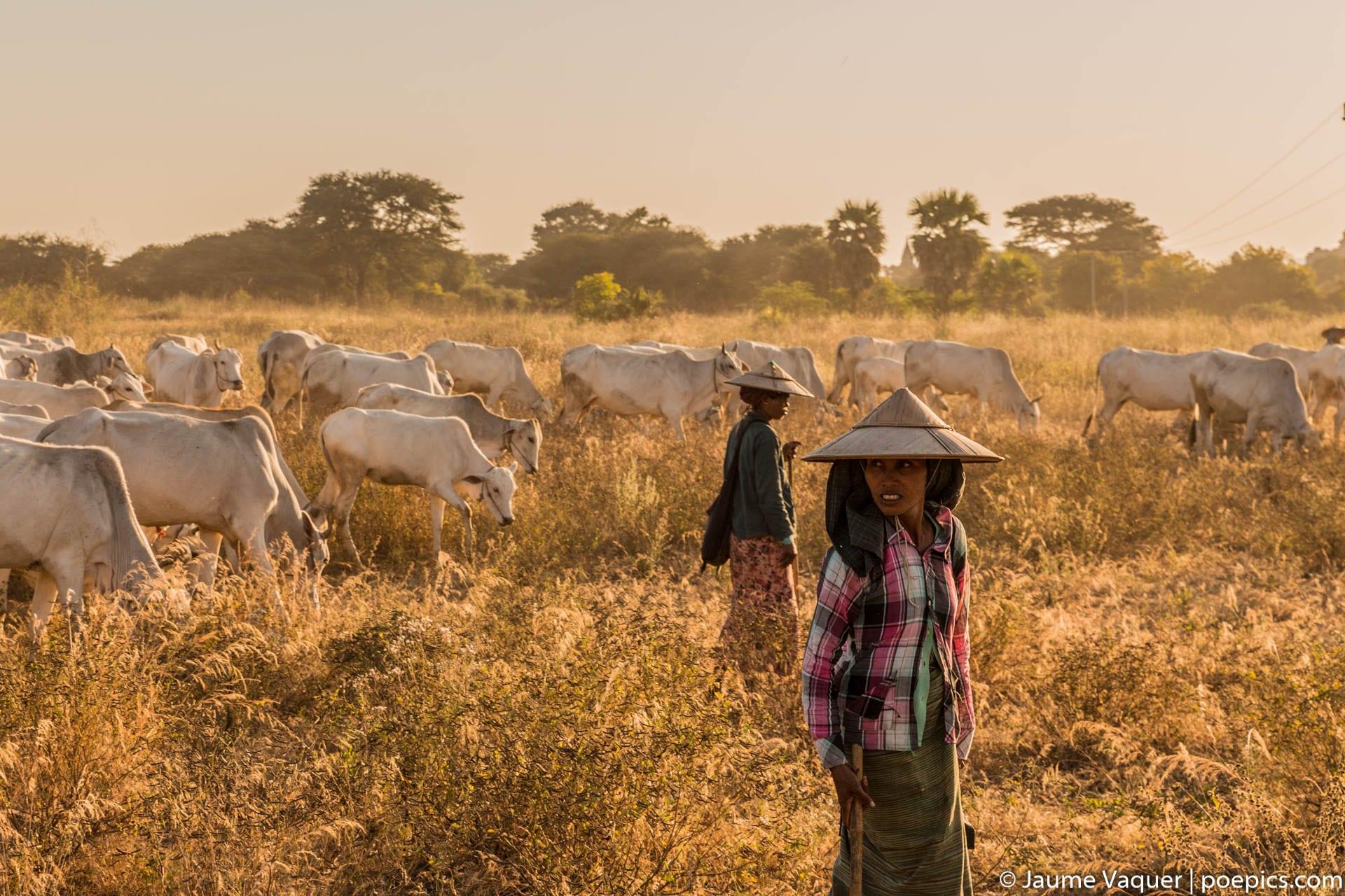 Women of Bagan, Myanmar (Burma)