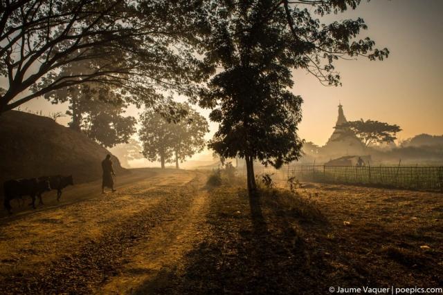 Mrauk U countryside sunrise, Myanmar Burma