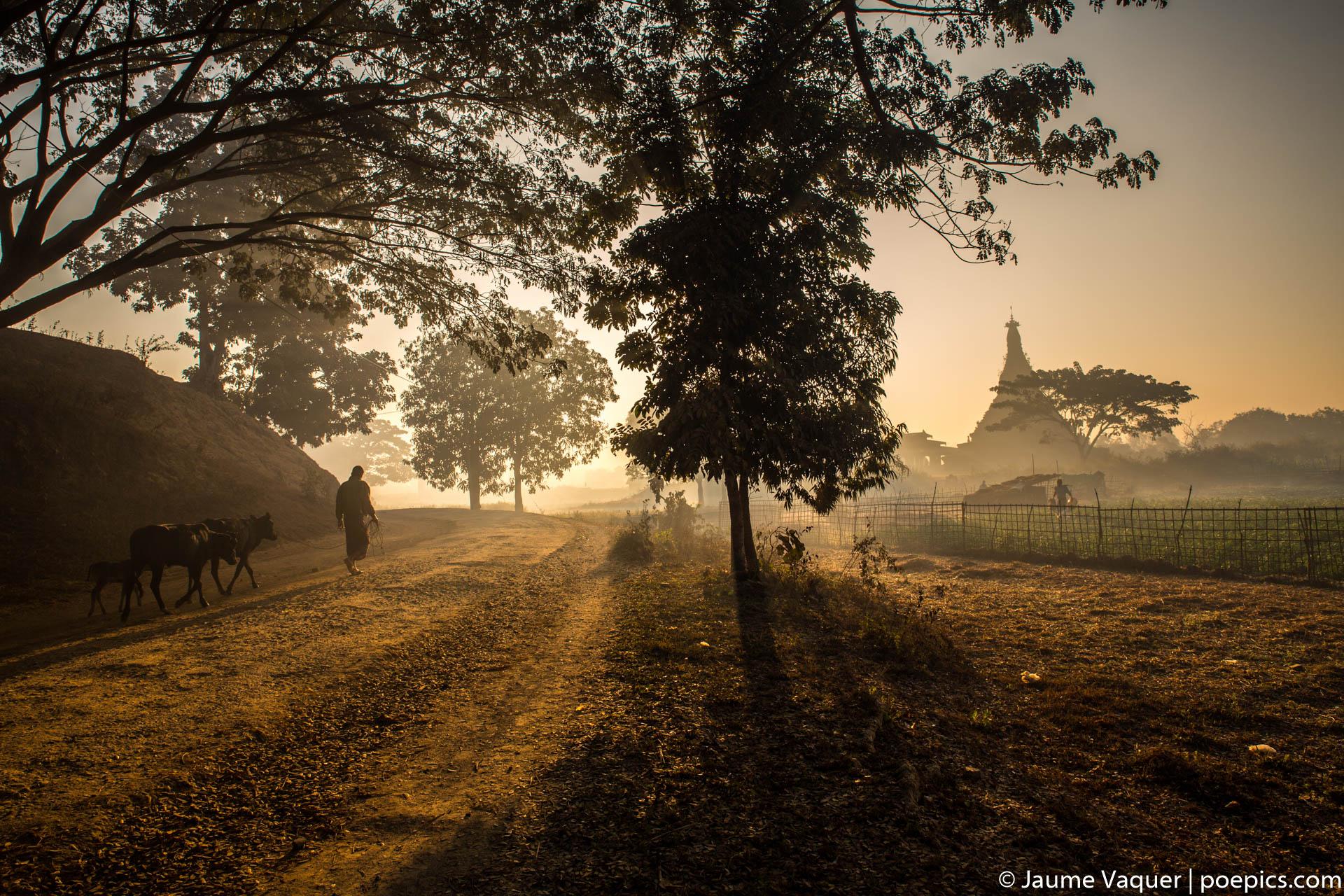 Mrauk-U countryside at sunrise, Myanmar Burma